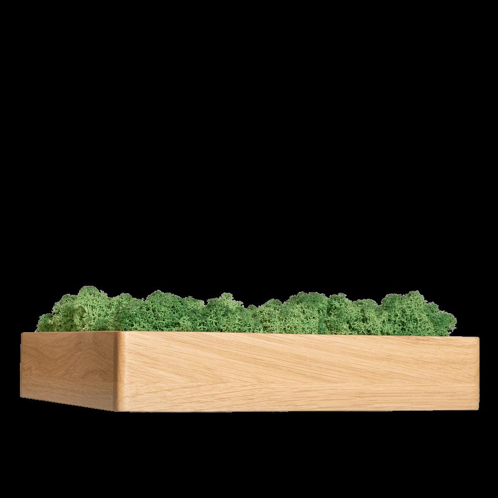 Rama gate z zielonym chrpbotkiem
