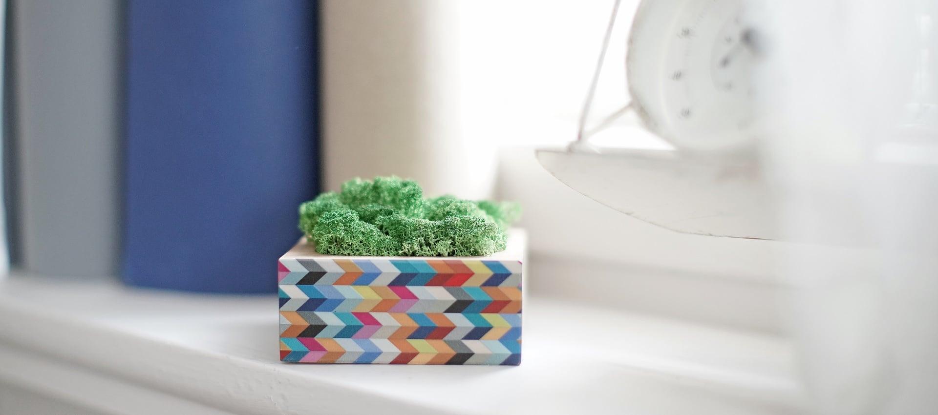 Higrometr z kolorowym nadrukiem - pomysł na prezent