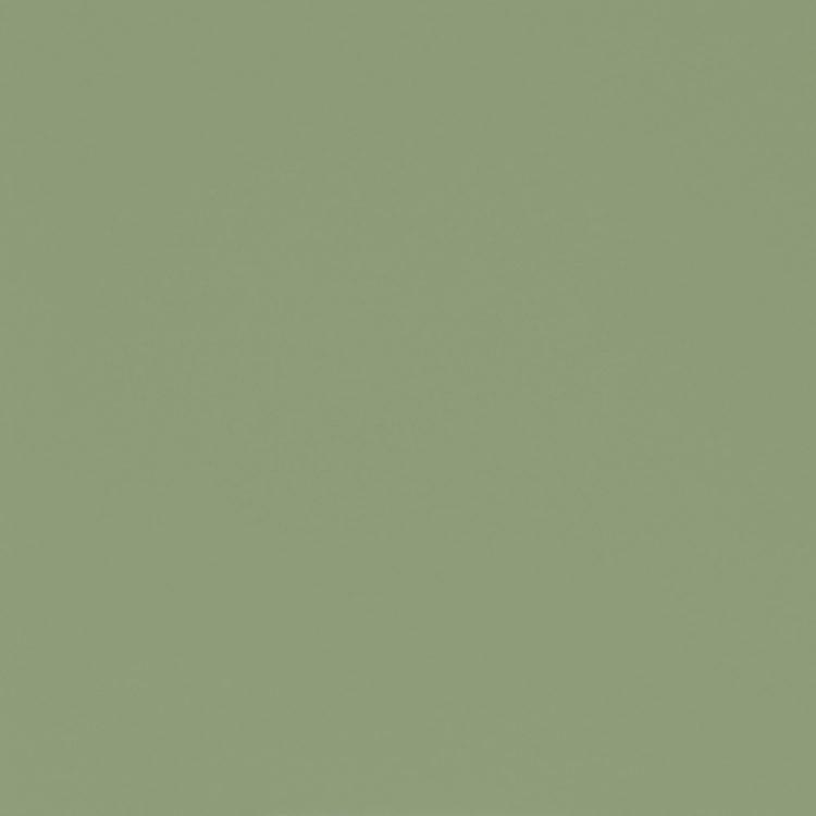 F118 miętowa farba mat (RAL 6021)